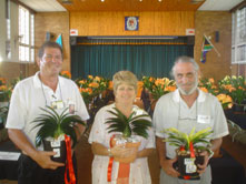 B--2007-LCC-BOS-&-1st-RU-Clivia-without-flowers