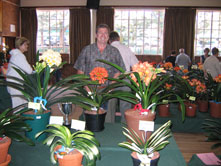 F--2009-NCC-BOS-Clivia-without-Flowers.-RU-Clivia-with-Flowers
